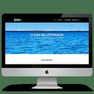Projekt Miljökonsult